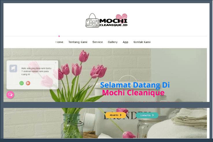 Website Mochi Clean